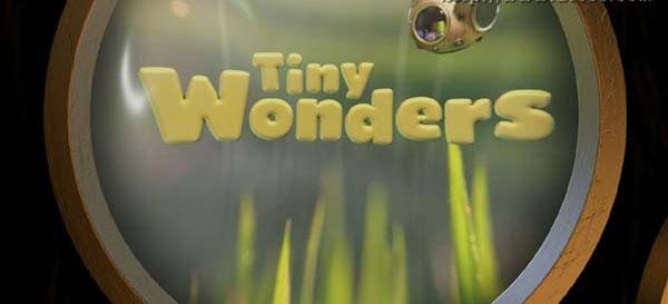 BBC科普自然动画片《Tiny Wonders 小奇迹》第一季全10集下载 mp4/英语带字幕 百度网盘